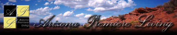 Long Realty Arizona Properties Banner