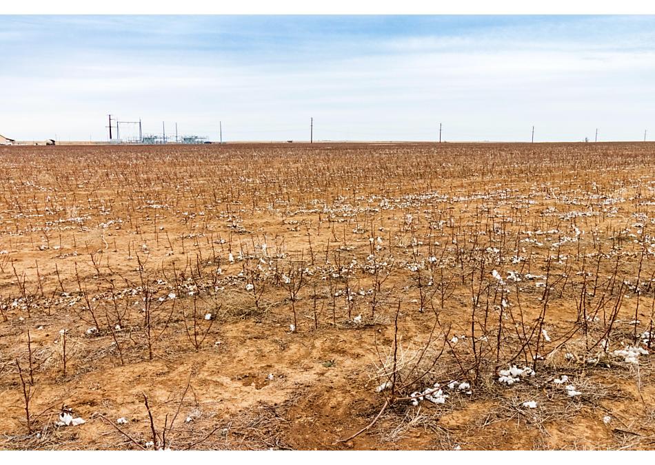 Photo of Paris Farm and Land Miami, TX 79059