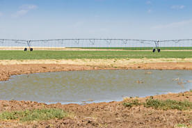 Photo of Coldwater Irrigated Farm Stratford, TX 79086