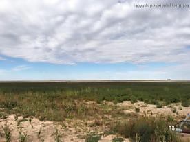 Photo of Sherman County +/-160 Sunray, TX 79086
