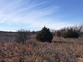 Photo of Lewis 320 Ranch Shamrock, TX 79079