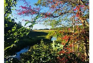 Photo of 40 Skaket Way Brewster, MA 02631
