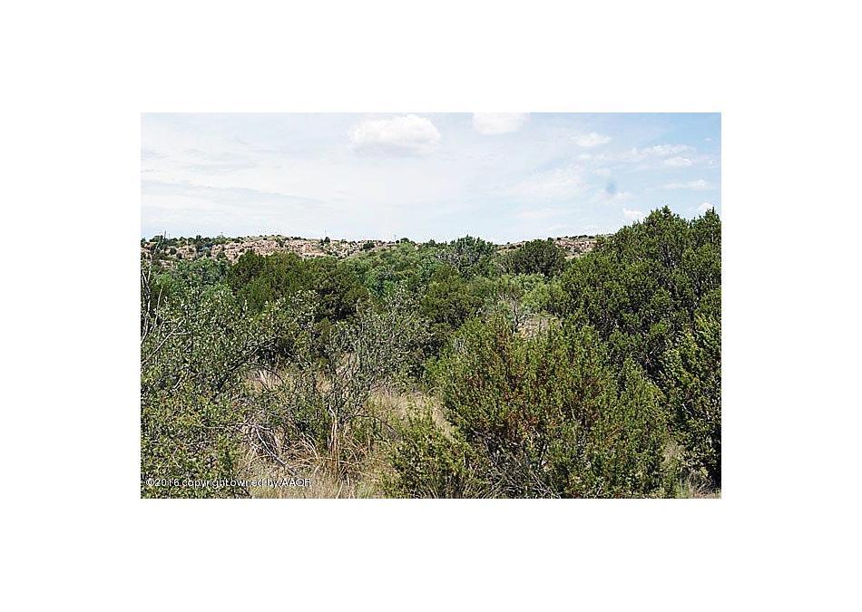 Photo of 6 Mcafee Timbercreek Dr Amarillo, TX 79118
