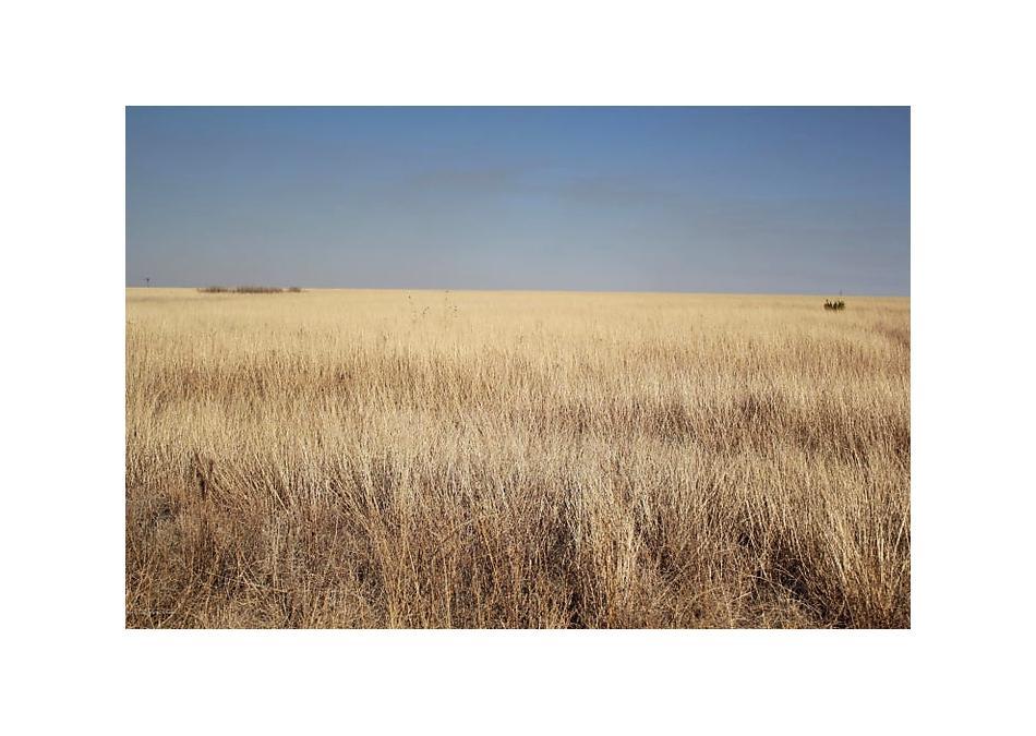 Photo of Pullman Amarillo, TX 79118