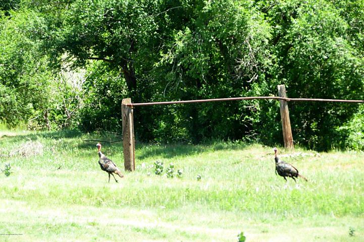 Photo of Palo Duro Creek 128 Spearman, TX 79081