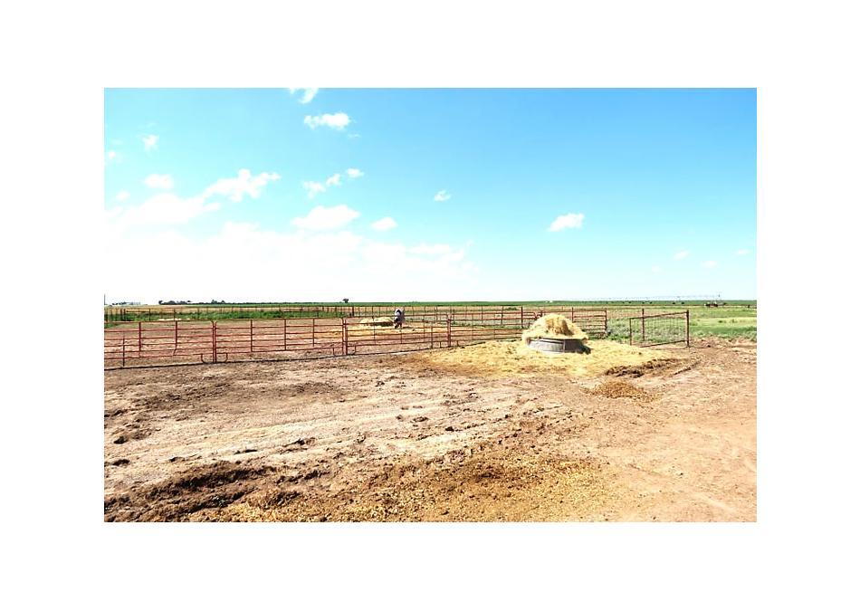 Photo of 13051 Fm 119 Sunray, TX 79086