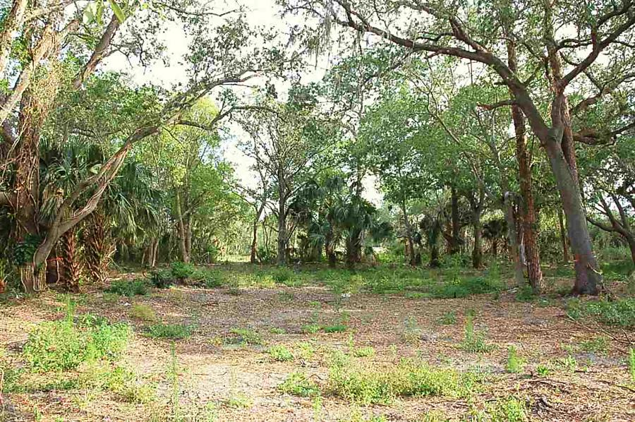 Photo of 197 State Rd 16 St Augustine, FL 32084