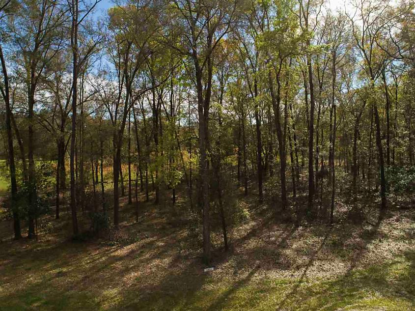 Photo of 21503 Nw 216th Lane (lot 4) High Springs, FL 32643