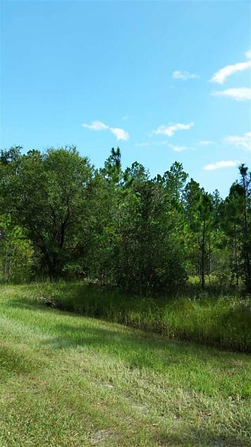 Photo of 4355 Wanda St Hastings, FL 32145