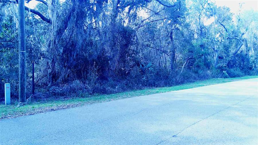 Photo of 135 W Grandview Dr East Palatka, FL 32131