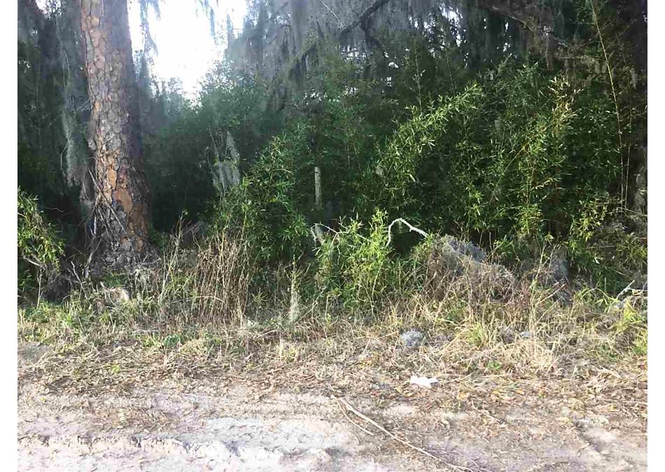 Photo of 0 Unassigned Re East Palatka, FL 32131