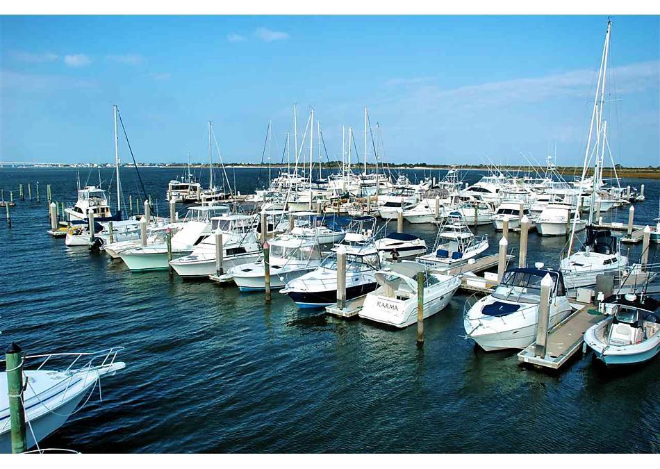 Photo of 223 Whitland Way St Augustine, FL 32086