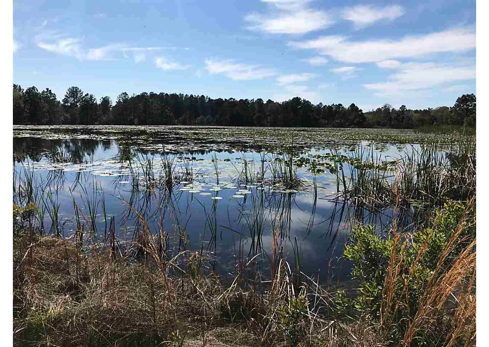 Photo of 0 Long Branch Trail Interlachen, FL 32148
