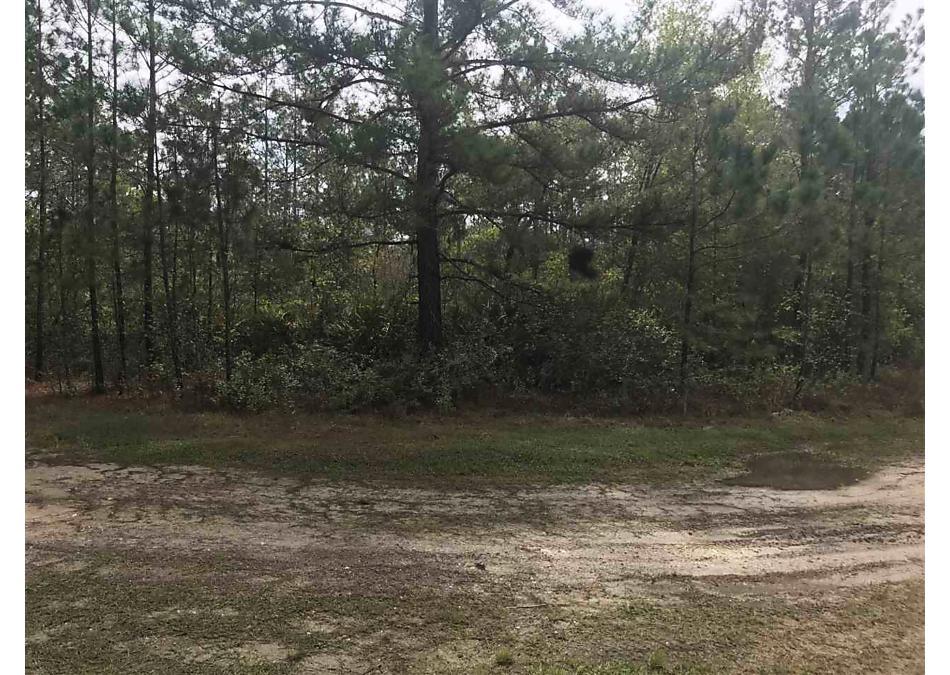 Photo of 125 Saddle Trail Interlachen, FL 32148