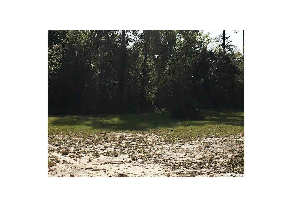 Photo of 106 Arrowhead Point Road Hawthorne, FL 32640
