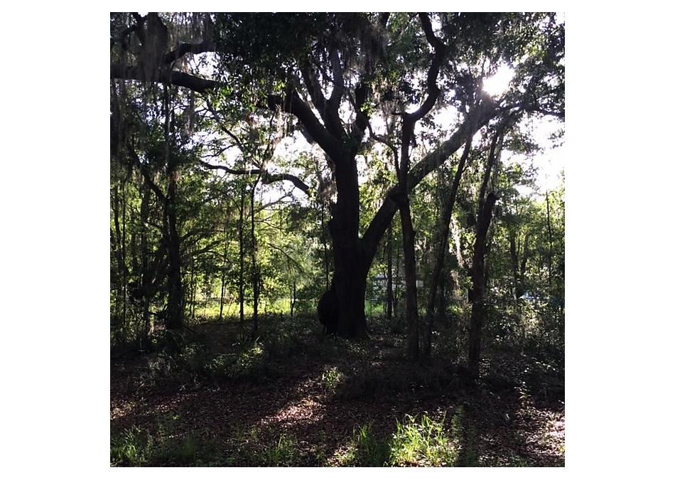Photo of Carolyn Ave Interlachen, FL 32148
