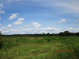 Photo of 0 County Road  13 A S Elkton, FL 32033