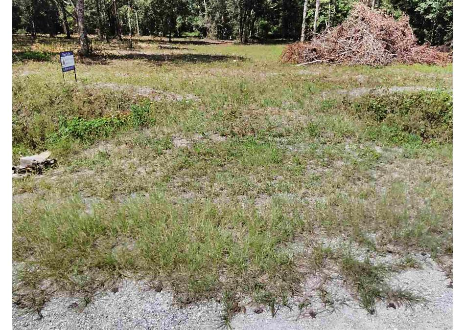 Photo of 9605 Pocklington Ave Hastings, FL 32145