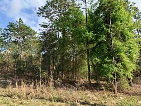 Photo of 1219 Baden Powell Road Hawthorne, FL 32640