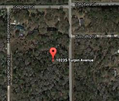 Photo of 10235 Turpin Ave Hastings, FL 32145