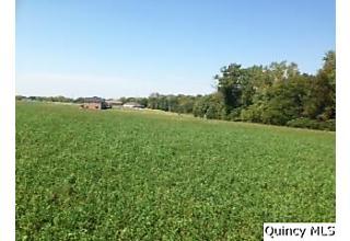 Photo of Lot 1 Oak Creek Acres Ursa, IL 62376