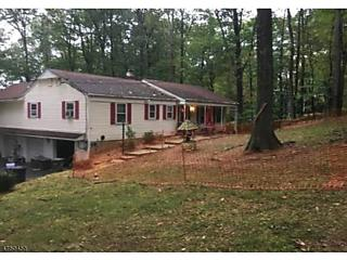 Photo of 4 Forest View Dr Washington Township, NJ 07853