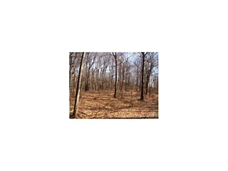 Photo of 28 Woodlands Trail Clinton Corners, NY 12514