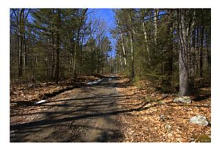 Photo of Allen Road Wurtsboro, NY 12790