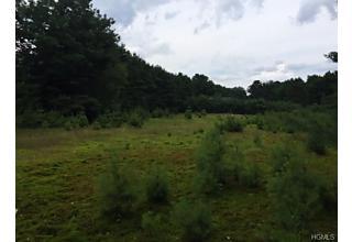 Photo of Fairway Drive Highland Lake, NY 12743