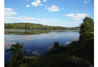 Photo of Shore Road Road Swan Lake, NY 12783