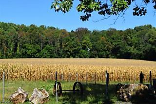 Photo of 1075 State Route 173 Bethlehem Township, NJ 08802