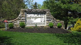 Photo of 1113 Spruce Hills Dr Glen Gardner, NJ 08826
