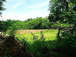 Photo of 0 Still Valley Pohatcong Township, NJ 08865