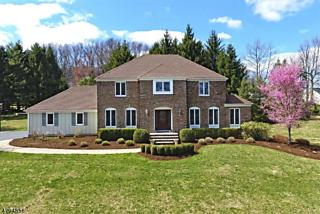 Photo of 97 Country Acres Dr Union Twp., NJ 08827