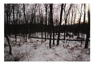 Photo of 20 Lake Surprise Road Cold Spring, NY 10516
