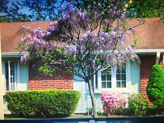 Photo of 239 D Huntington Drive Lakewood, NJ 08701
