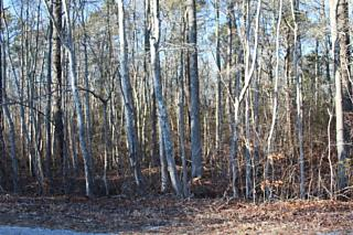 Photo of 86 Lamson Road West Creek, NJ 08092