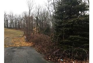 Photo of Bedford, NY 10506